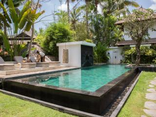 designvilla for family/friends - Lodtunduh vacation rentals