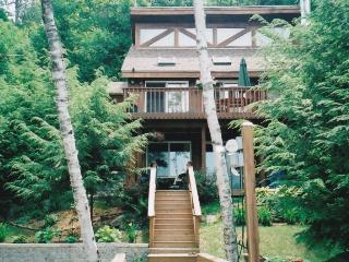 Lakefront Home, Private sandy beach & dock - Antrim vacation rentals