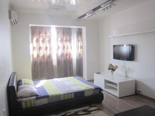 1 bedroom Apartment with Internet Access in Bishkek - Bishkek vacation rentals