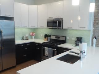 Wrigleyville Retreat - Southport Property - Chicago vacation rentals