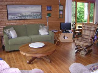 Nice Cottage with Deck and Central Heating - Mackinac County vacation rentals