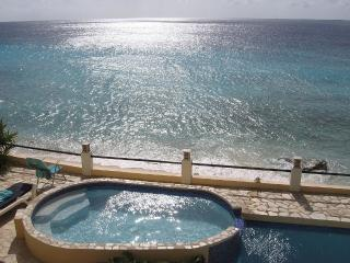 Beachfront Location. Spectacular Ocean View. - Kralendijk vacation rentals