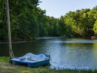 Lakeside Majesty - Incredible Luxury Mountain Home - Ellijay vacation rentals