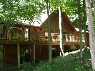 Crystal Mountain 6 Bedroom 3 Bath Log Cabin - Comins vacation rentals
