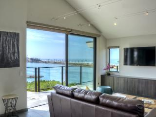 Spectacular New Residence at the Beach - Carlsbad vacation rentals