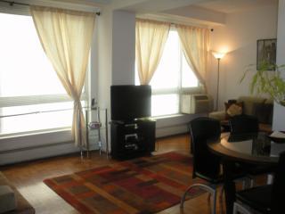 Lux,750sq,Bdwy/TimesSq(7)Open dates Feb $100;Mar$2 - New York City vacation rentals