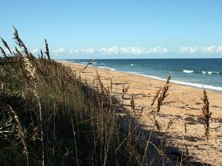 Great Ocean Views, Luxurious Cinnamon Beach - Palm Coast vacation rentals