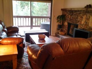Four-bedroom condo in Tahoe, near beach and ski! - Incline Village vacation rentals