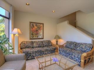 Napili Kiwi Condo - 3 br home, near beach - Lahaina vacation rentals