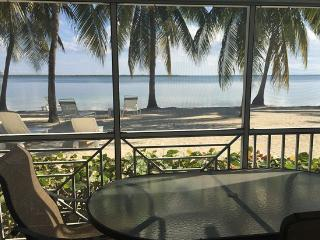 Beautiful and Affordable Condo - Grand Cayman vacation rentals