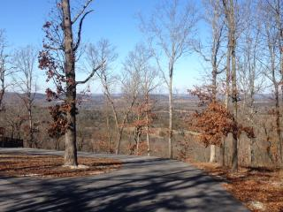 Located on 8 Acres overlooking Table Rock Lake - Lampe vacation rentals