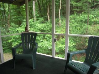 Clearfork Farm on a year round creek Free Wi-Fi - Pigeon Forge vacation rentals