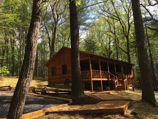 Spectacular 1 Bedroom Cabin Nestled in the Pines w/ Hot Tub - Rileyville vacation rentals