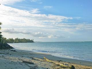 Experience Tropical Paradise - Loiza vacation rentals