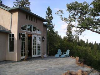 1 bedroom House with Deck in Twain Harte - Twain Harte vacation rentals