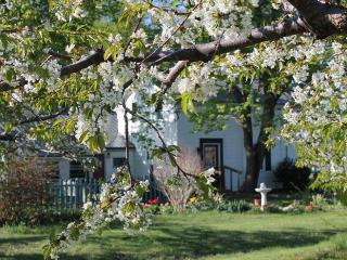 Self-Catering Suite Located on the Wine Trail - Hector vacation rentals