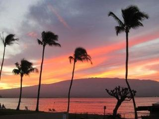 Spectacular Direct Oceanfront 60 ft to the water - Maalaea vacation rentals