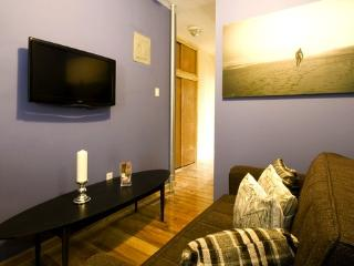 #8315 Times Square 2bdr/ 1 bath - Manhattan vacation rentals