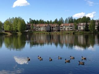 Family-Friendly, Lake/Mountain Views - Anchorage vacation rentals