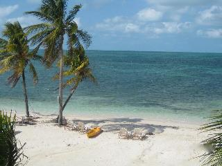 Five Star Resort on Grand Bahama Island! - West End vacation rentals