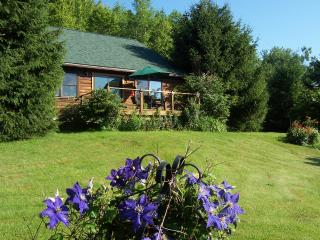 Andes Cabin Retreat-Spectacular View Adjoining - Andes vacation rentals