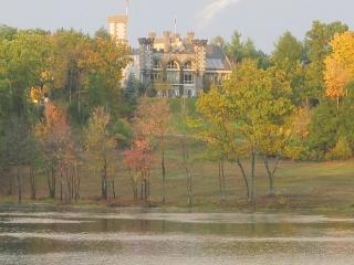 Unique luxurious gothic castle - Rindge vacation rentals