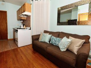 #8438  Midtown Comfortable 1 bedroom apt - Manhattan vacation rentals