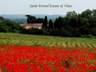 Domaine Saint Ferreol, Le Catalan - Pezenas vacation rentals