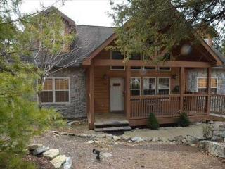 Perfect Cabin with Deck and Internet Access - Reeds Spring vacation rentals