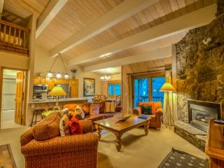 Great Size Condo, Across the Road from the Slopes - Steamboat Springs vacation rentals