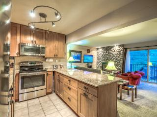The Ultimate Ski-in Condo - Steamboat Springs vacation rentals