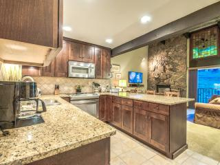 Ski In Condo, Sleeps 10, Views of the Slopes - Steamboat Springs vacation rentals