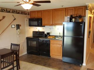Fantastic Slopeside Condo - Snowshoe vacation rentals