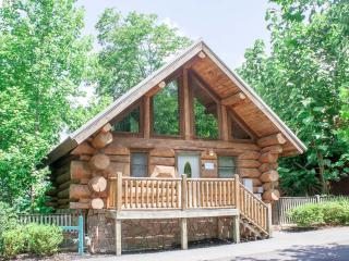 A Bird's Eye View at Mountain Shadows Resort - Gatlinburg vacation rentals