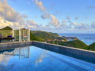 Villa Angelo: 'Villa Car'5*L - Anse des Flamands vacation rentals