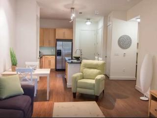 Retreat - Bars, Shops  Restaurants! - Houston vacation rentals