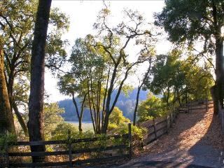 Wine Country Get Away in the Heart. - Healdsburg vacation rentals