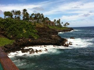 AC OCEANFRONT Condo, Nothing But Ocean and Turtles - Koloa vacation rentals