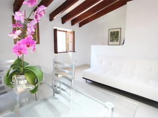 Apartment in Soller, P. de Mallorca 102602 - Soller vacation rentals