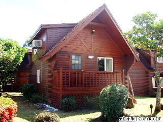 Single Wood House/Vacation Home - Pingtung vacation rentals