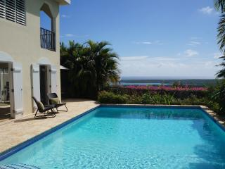 Villa Destino - Tropical Estate w/Private Pool - Isla de Vieques vacation rentals