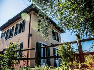 Nice House with Internet Access and Dishwasher - San Martino in Freddana vacation rentals