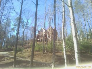 New Mountain View Lots of Privacy Romantic Getaway - Ellijay vacation rentals