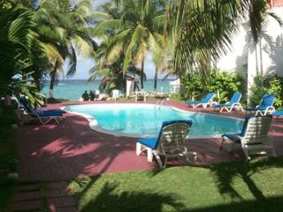 Chrisanns Apt9 Paradise Suite, beachfront and Wifi - Ocho Rios vacation rentals