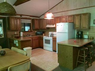 Amazing Lake House for the Whole Family ! - Tobyhanna vacation rentals