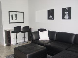 Comfortable 1 bedroom Condo in Lutz - Lutz vacation rentals