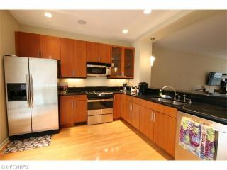 Executive Suite- 10 min to Cleveland Clinic - Cleveland Heights vacation rentals