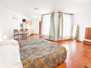 Helle komfortable Wohnung im Prager Stadtzentrum - Prague vacation rentals