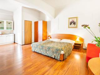 Komfortable Studio mit Wi-Fi im Prager Stadtzenter - Prague vacation rentals