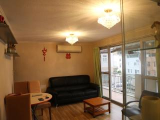 ENTIRE MIDDLE FLOOR OF A TRANQUIL VILLAGE - Hong Kong vacation rentals